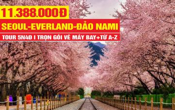 Tour du lịch Hàn Quốc - Đón Sắc Xuân mùa Hoa Anh Đào 5n4d