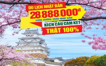 Du lịch Nhật Bản CUNG ĐƯỜNG VÀNG Bay thẳng từ HCM Osaka | Kyoto | Núi Phú Sĩ | Tokyo 4sao 7N6Đ