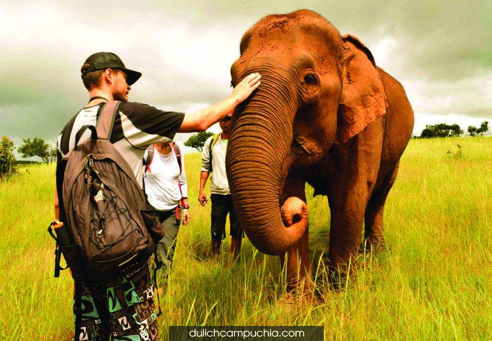du lịch Campuchia Thung Lung Voi