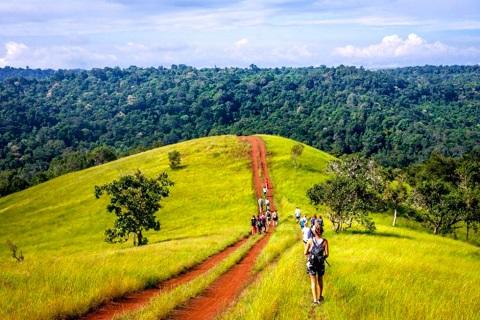 Khám phá Thiên đường rừng xanh Mondulkiri, Campuchia từ A-Z