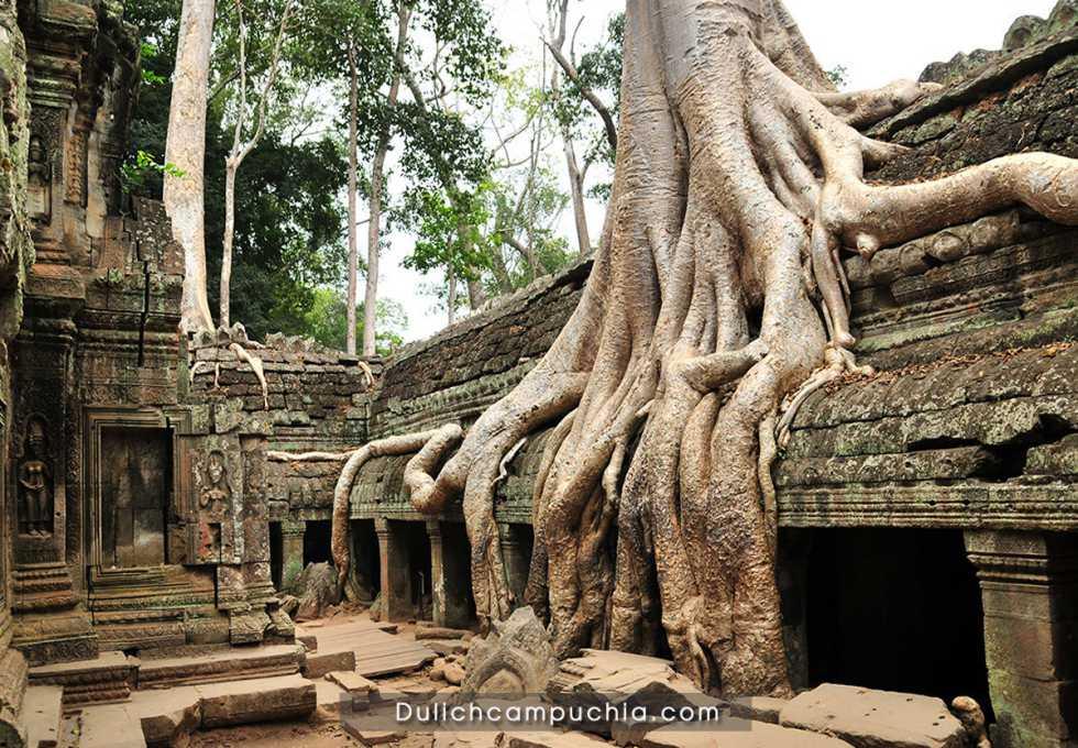 Angkor-Wat-Campuchia