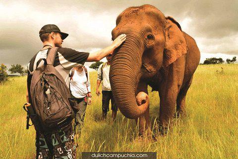 Du lịch Campuchia: Đến Mondulkiri, thăm Thung Lũng Voi Senmonorom
