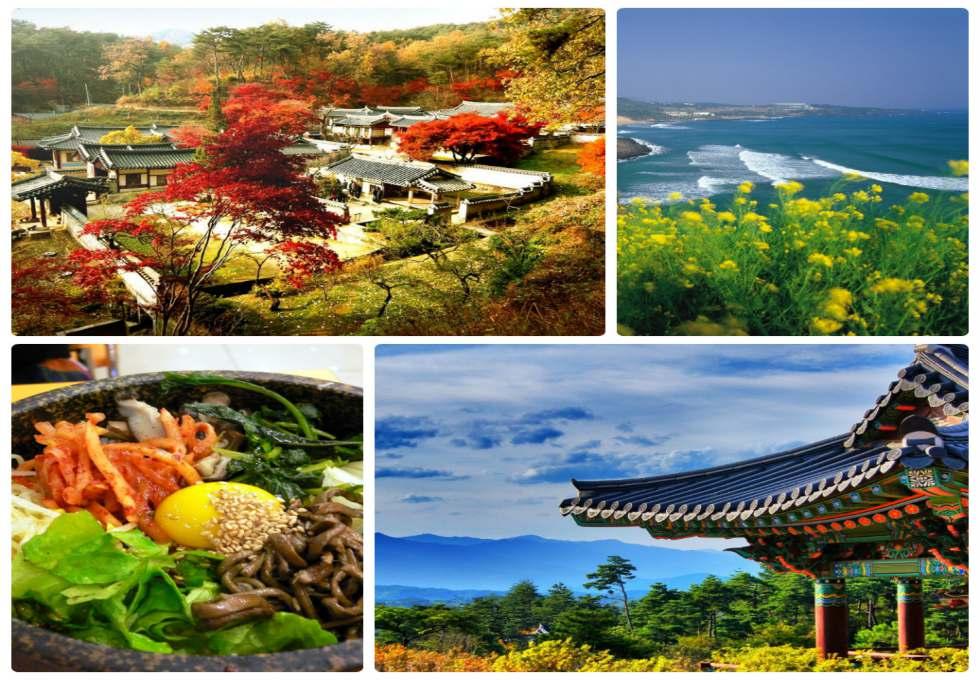 Kinh nghiệm du lịch Nhật Bản tiết kiệm nhất