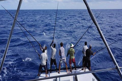 Câu cá ở Maldives – Hoạt động không thể thiếu cho kì nghỉ thú vị.