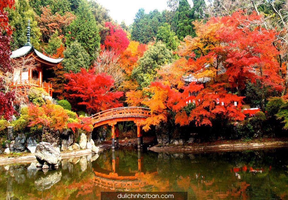 du-lich-nhat-ban-Kyoto