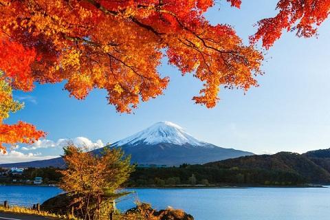 Du lịch Nhật Bản: 8 Sự kiện đặc sắc trong tháng 9 & 10