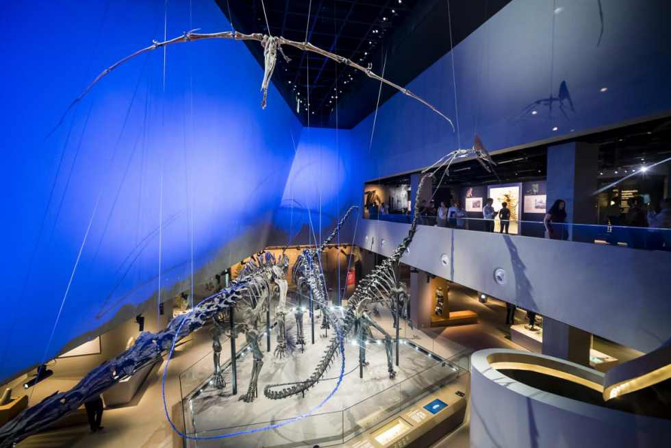 Lee-Kong-Chian-Natural-History-Museum2