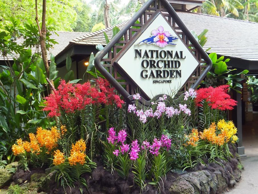 botanic-garden-singapore1