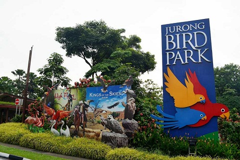 Vườn chim Jurong - Vương quốc loài chim