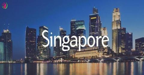 MELION - BIỂU TƯỢNG SINGAPORE