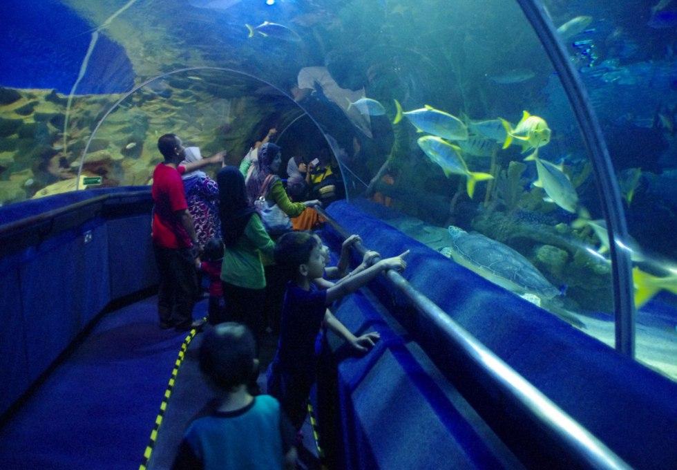 thuy-cung-aquaria-kuala-lumpur-city-center4
