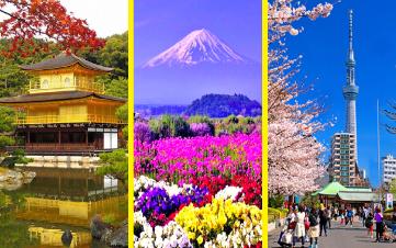 OSAKA - KYOTO - KOBE - NAGOYA - HAKONE - NÚI PHÚ SỸ - TOKYO 6N5Đ