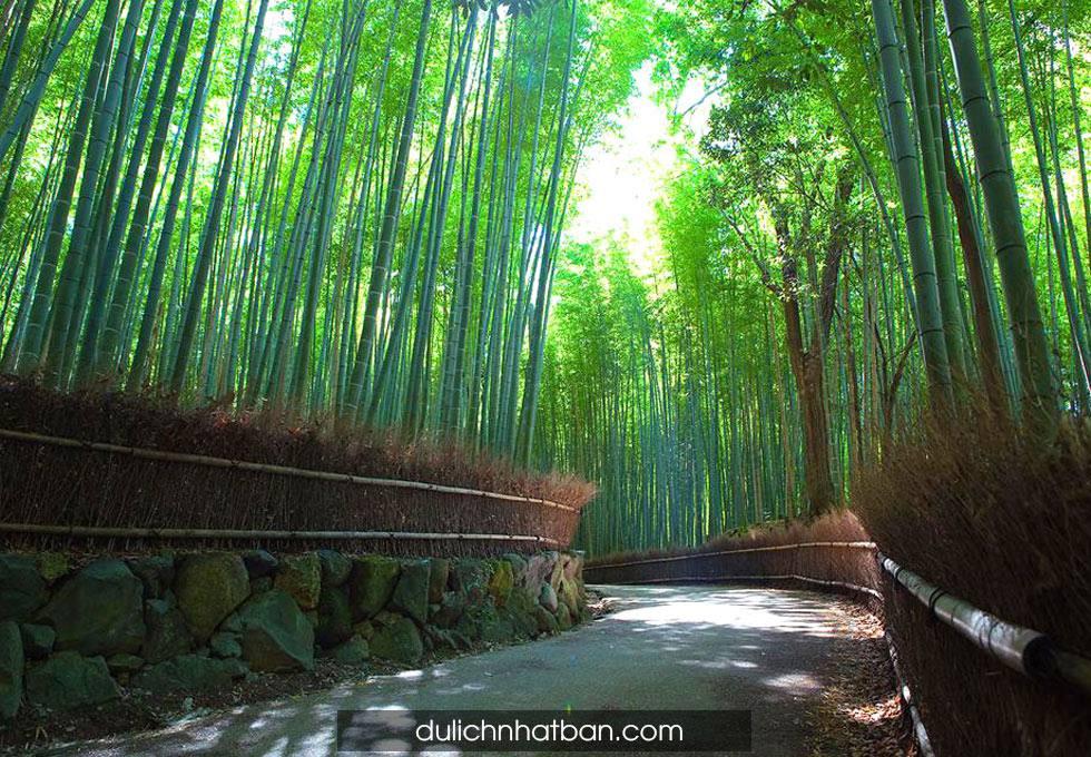 khu-rung-tre-Arashiyama