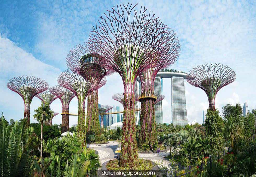 garden-by-the-bay-du-lich-singapore-3-ngay-2-dem
