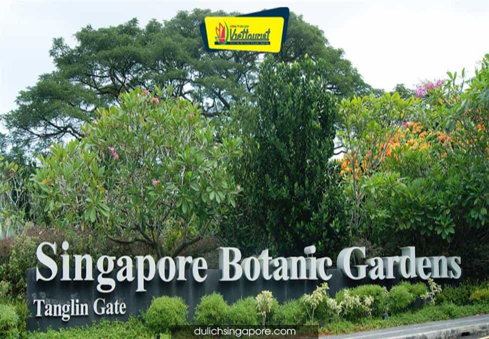 botanic-garden-singapore-viettourist