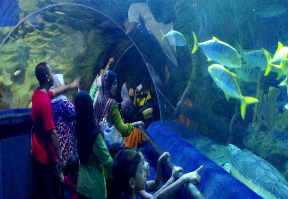 KLCC-Aquarium