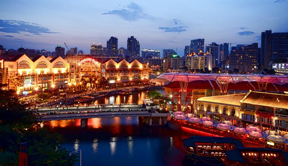 singapore-ve-dem2