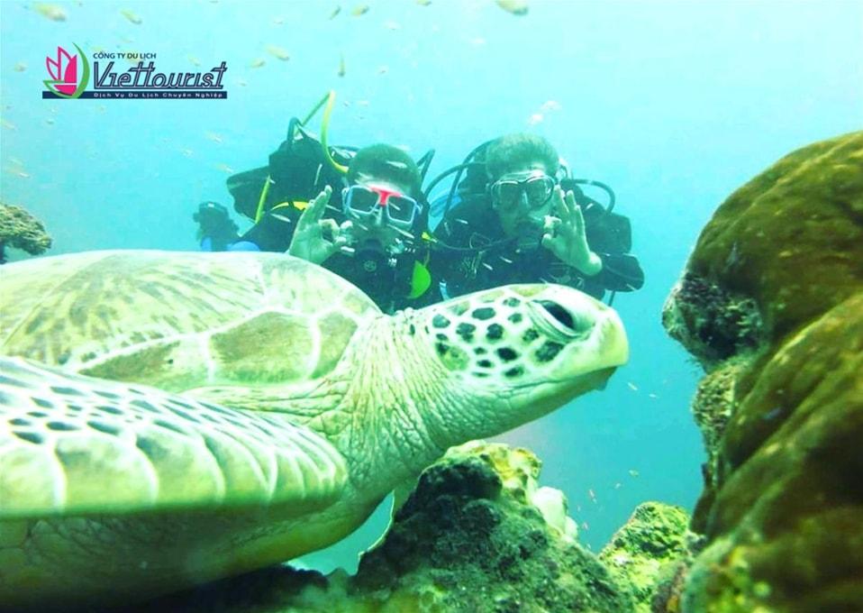 tour-maldives-4n3d-viettourist5