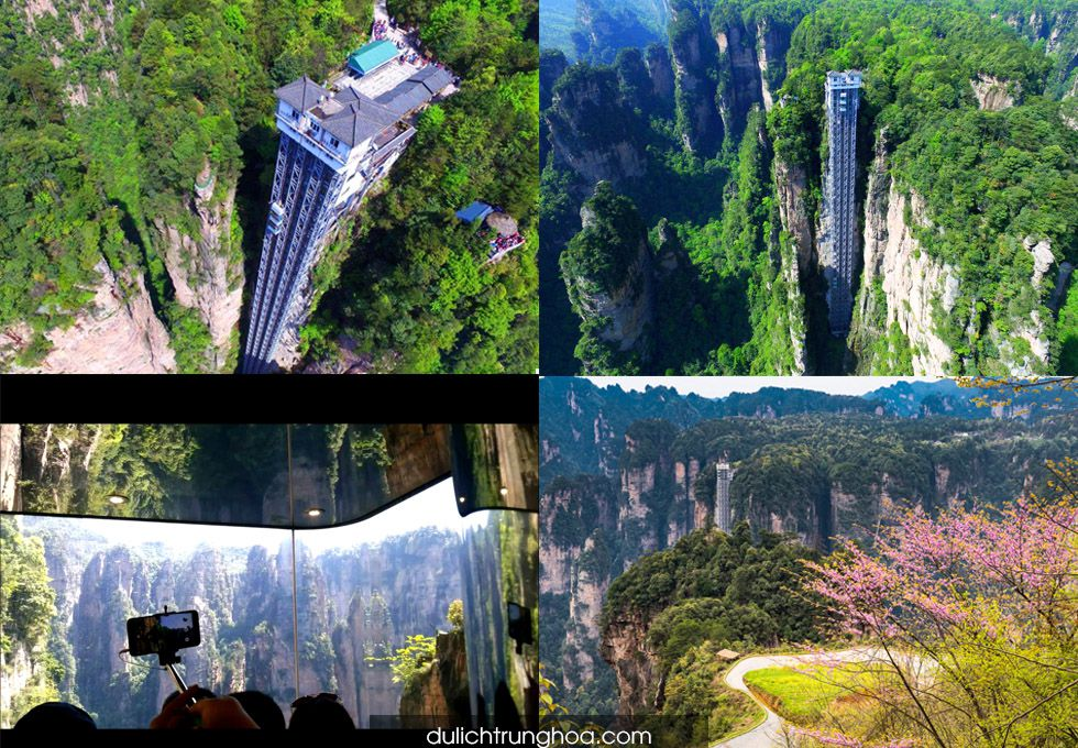 du lịch Trương Gia Giới thang máy Bạch Long Thiên Di