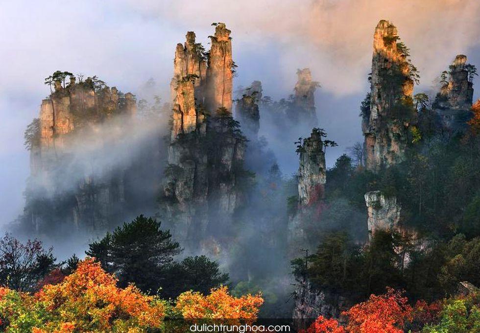 du lịch Trương Gia Giới Thiên Tử Sơn