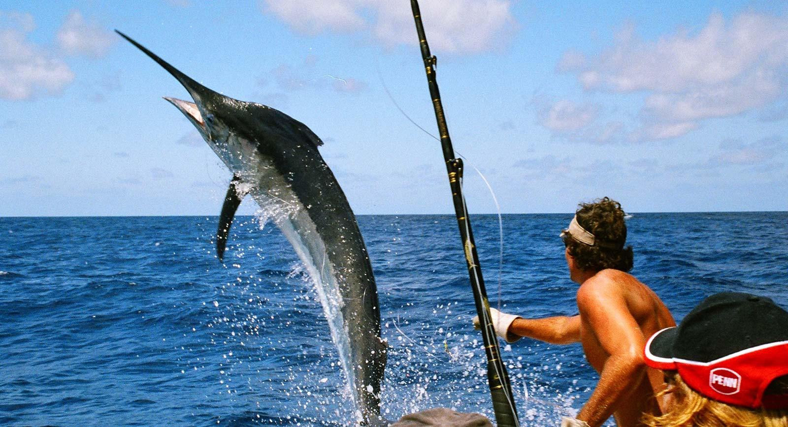 Câu cá ở Maldives mùa nào thích hợp nhất ?