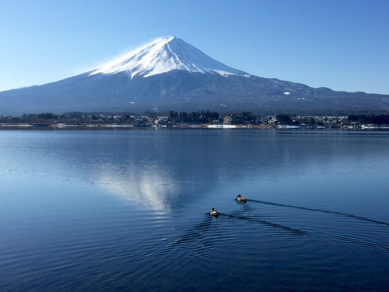 Cảnh sắc bốn mùa hồ Kawaguchi Nhật Bản