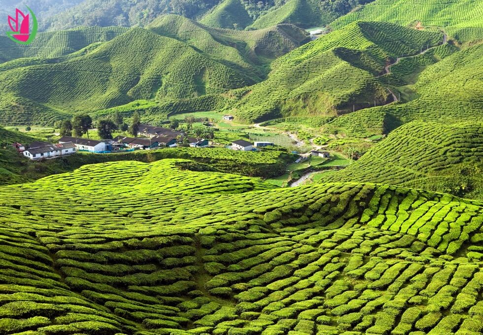 du-lich-malaysia
