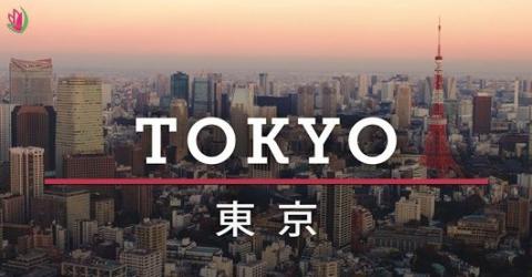 NHỮNG KHU VƯỜN NGẮM HOA ANH ĐÀO NỔI TIẾNG NHẤT TOKYO