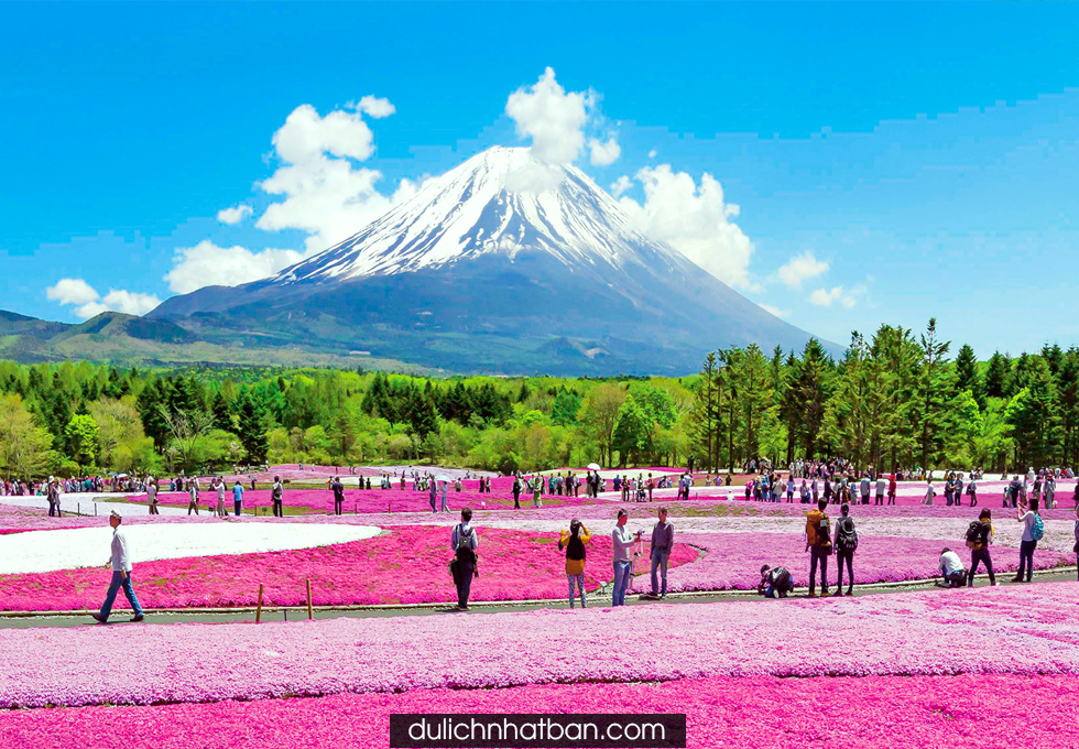 Du lịch Nhật Bản Osaka - Núi Phú Sĩ - Hakone - Nagoya - Nara 5N4Đ