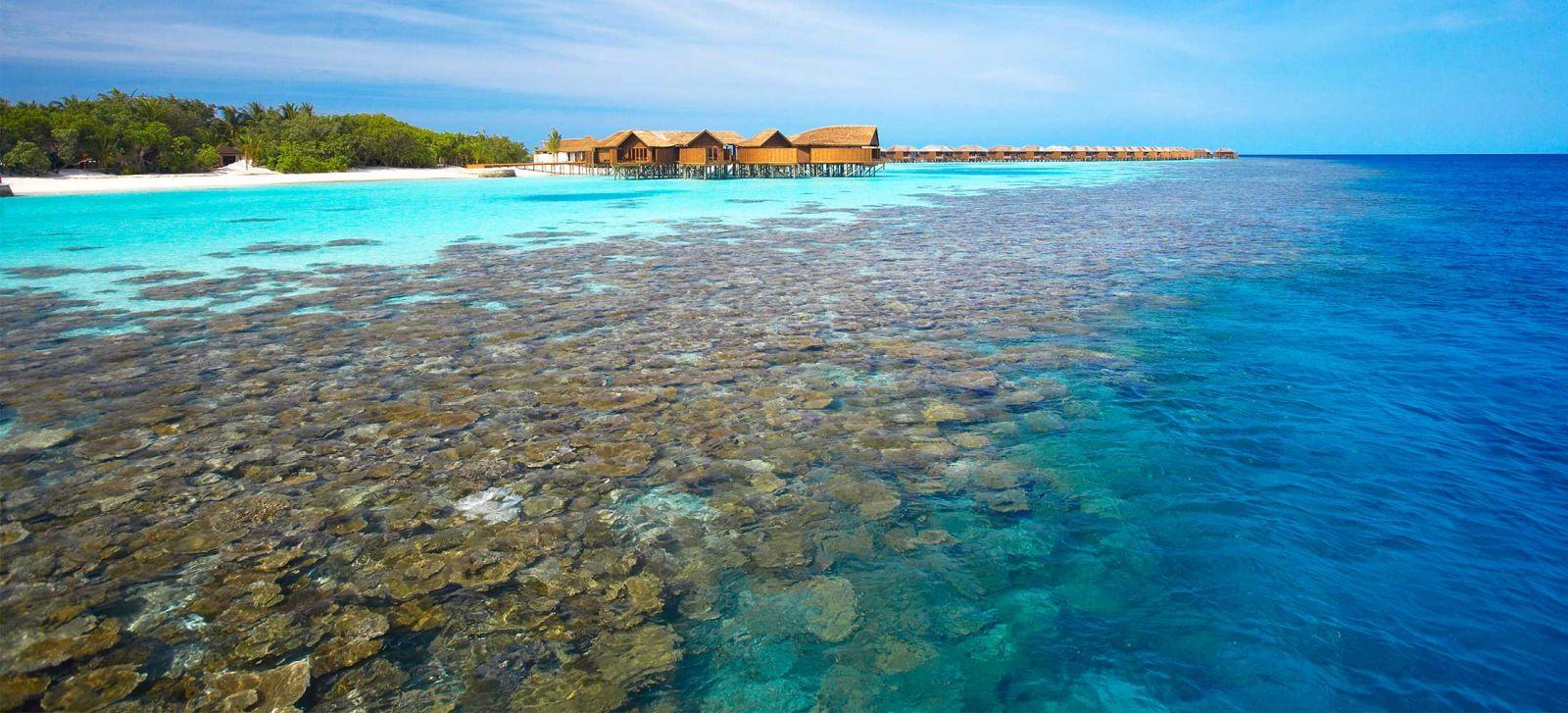 lặn biển Maldives