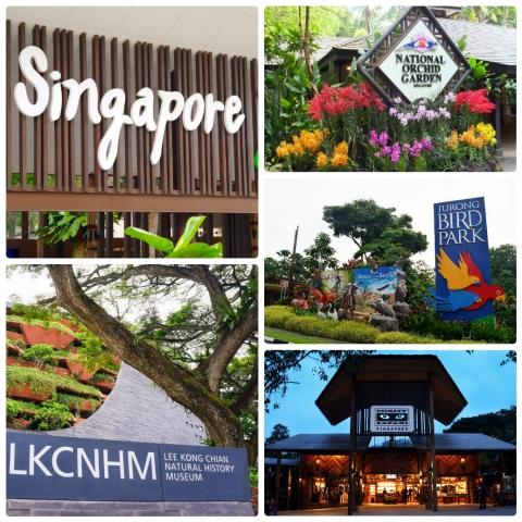 """7 Điểm đến """"học mà chơi"""" ở Singapore"""