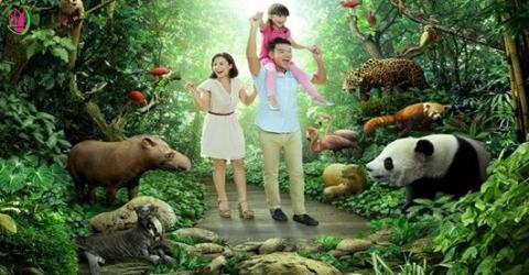 5 ĐỊA ĐIỂM TẠI SINGAPORE DÀNH CHO TEAM YÊU ĐỘNG VẬT