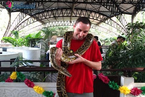 Viện nghiên cứu nọc rắn Hoàng gia Bangkok